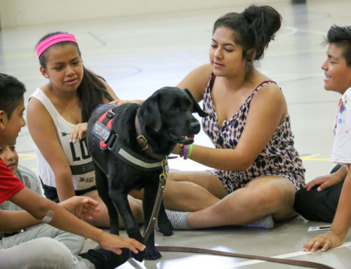 Therapy Dog Visits Quest