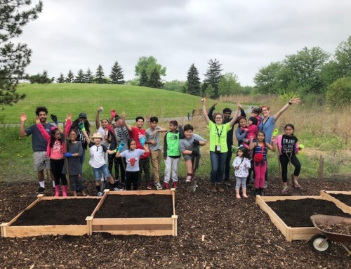 York Builds Community Garden