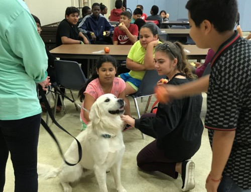 Therapy Dog Returns to Quest