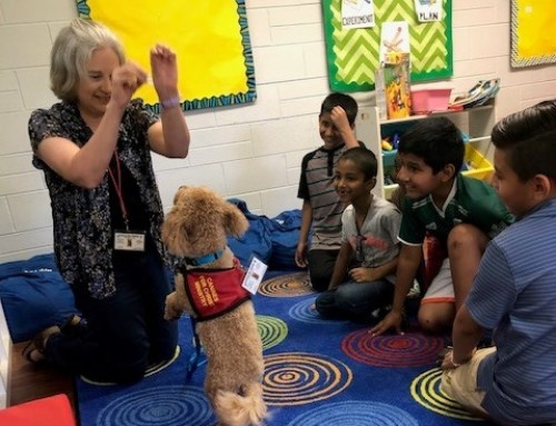 Therapy Dog Visits York Summer Program